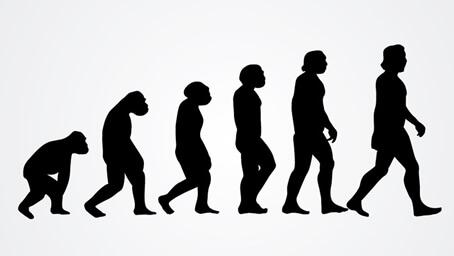人間の進化と緊張